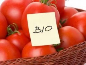 Warzywa i przetwory ekologiczne