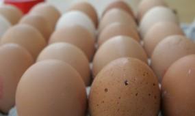 Jaja świeże klasa wagowa M 53-62g