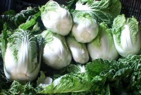 warzywa polskie